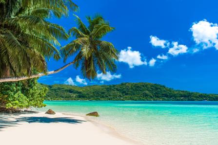 Island Splurging